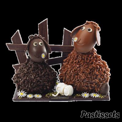 imagen453-pngovelles-de-xocolata
